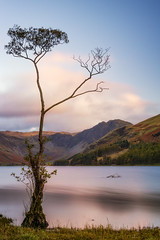 That Tree Again... (Rich Walker Photography) Tags: tree trees mountain mountains buttermere lakedistrict cumbria landscape landscapephotography lake longexposure longexposures longexposurephotography canon england efs1585mmisusm eos eos80d