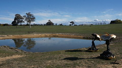 #20 Consumption 2017 and across the dam (spelio) Tags: actsep2018shawyassvalleynsw canberra australia sep 2018 rural art sculpture murrumbateman landscape rurual paddock pano