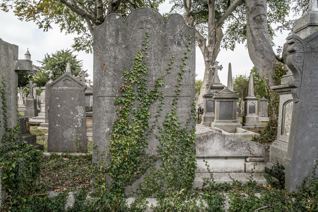 SEPTEMBER 2018 VISIT TO GLASNEVIN CEMETERY [ I USED A BATIS 25mm LENS AND I EXPERIMENTED WITH CAPTURE ONE]-144801