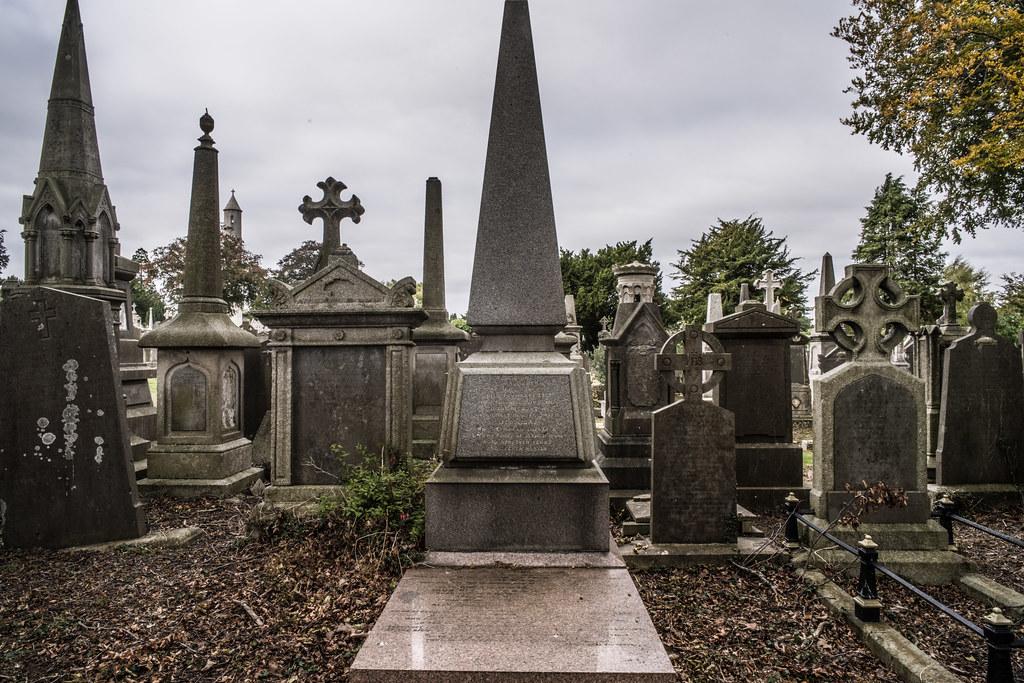 SEPTEMBER 2018 VISIT TO GLASNEVIN CEMETERY [ I USED A BATIS 25mm LENS AND I EXPERIMENTED WITH CAPTURE ONE]-144830