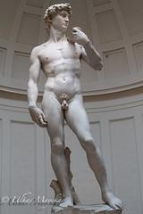 David statue Florence Italy (mayekarulhas) Tags: