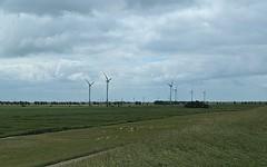 Greetsiel_009 (rhomboederrippel) Tags: rhomboederrippel fujifilm xe1 2018 june europe germany lowersaxony greetsiel northsea wattenmeer clouds windturbine windkraftwerk grassland sheep