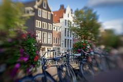 P9300003 (alowlandr) Tags: lensbaby sol sol22 mft creative blur amsterdam bicycle