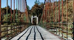 Il ponte di Ramello (danilocolombo69) Tags: cavi fiume danilocolombo69 danilocolombo nikonclubit pontesospeso