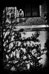 old man and shadow (Pomo photos) Tags: old man window wall abstract surreal art noir night fujifilmxt20 shadow tree expressionism people silhouette lofi lowlight blackandwhite blackwhite monochrome mono mood street city cityscape urban minimalism branch