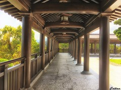 The passage way - 慈 山 寺,香港 -Tsz Shan Monastery, Hong Kong