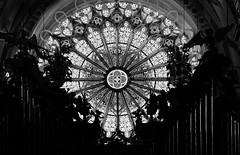Die Fensterrose der Abteikirche Ebrach - The rose window of the abbey church Ebrach (cammino5) Tags: klosterkirche ebrach fensterrose sw gotik franken bayern deutschland september 2018 steigerwald