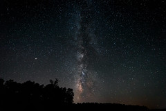 Milky Way over pine forest (Eduardo Estéllez) Tags: milkyway night sky forest stars star background galaxy space over nature trees tree landscape travel silhouette outdoor nighttime universe astrophotography astronomy granadilla extremadura spain caceres beautiful dark beauty summer starry light natural colorful bright outer black blue cosmos nebula scene science vialactea estellez eduardoestellez