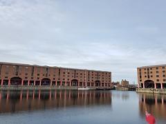 Albert Docks (cn174) Tags: liverpool liverpoolgiants giants liverpoolsdream giantspectacular merseyside albertdocks canningdock dog xoxo babyboy littlegirl