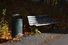 Empty (Annikamy) Tags: bench bänk orten förorten förort höst autumn alby botkyrka stockholm empty light shadow abandonned annikamy suburb trachcan fall skugga nikon grass road park wood