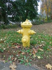Rensselaer Mfg. Co. - List 90 - Greenfield, MA (nhhydrants) Tags: hydrant greenfield massachusetts