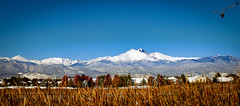 Colorado 14ers...October 15th, 2018 (Rsw0124) Tags: mountains longpeak colorado trees fall snow rocky