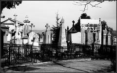 Retinette 1A  XP2 au D76t cimetière du Cret de Roc (25) (Bokey Shutter) Tags: kodakretientte1a ilfordxp2 d76 saintetienne