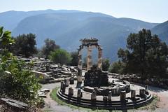 DSC_9587 (Kent MacElwee) Tags: greece delphi europe sanctuaryofathenapronaia athena goddess greekmythology archaeologicalsite ancient historic ruins archaeology mountparnassus 4thcenturybc ancientgreece column delphoi