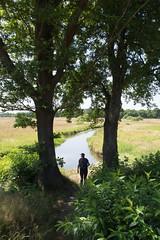 Bij de Drentsche Aa (Jeroen Hillenga) Tags: drenthe drentseaa drentscheaa schipborg wandelen wandelaar hiking netherlands nederland natuur nature natuurgebied landscape landschap