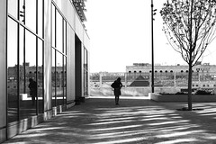 In the pocket (pascalcolin1) Tags: paris13 femme woman poche posket reflets reflection vitres windows miroir mirrors allée path arbre tree photoderue streetview urbanarte noiretblanc blackandwhite photopascalcolin 50mm canon50mm canon