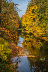 Autumn at Cowichan station (cdnfish) Tags: cowichanvalley cowichan cowichanstation cobblehill millbay vancouverisland bc britishcolumbia canada autumn foliage fall rocks rock rural reflections reflection river water tree trees sony sonya7m2 a7m2 calm serenity riverbank landscape landscapephotography