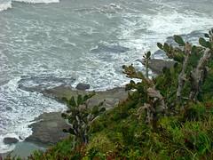 Praia da Cal (Gijlmar) Tags: brasil brazil brasilien brésil brasile brasilia riograndedosul américadosul américadelsur southamerica amériquedusud praia paya beach