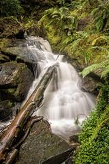 Log In Waterfall (Click And Pray) Tags: managedbyclickandpraysflickrmanagr pucksglen argyll scotland landscape horizontal waterfall canyon chasm log pucksglenargyllscotlandlandscapehorizontalwaterfallcanyonchasmloggbr