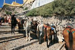 Santorini_2007_08_195 (Бесплатный фотобанк) Tags: греция греческая республика санторини остров
