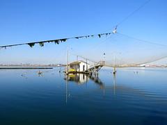 IMG_0016x (gzammarchi) Tags: italia paesaggio natura ravenna marinadiravenna lago piallassa piallassapiomboni casa capanno rete riflesso monocrome