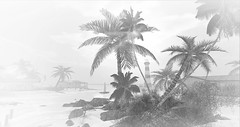 Baja Norte (Saga Mea) Tags: baja norte beach palm trees seascape monochromatic landscape lighthouse sl virtual