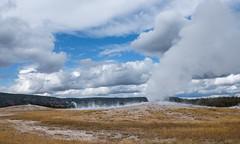 Old Faithful, Yellowstone National Park (Rick Knepper) Tags: fujifilmgfx50s gf3264mmf4rlmwr