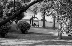 Mourning (Vlad Bobe) Tags: fomapan 100 fomapan100 monochrome blackwhite film solitary bench lake canon canoneos1v mourning