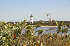 MV18_29_144 (Sopranova) Tags: menemsha oakbluffs vineyardhaven aquinnah lighthouse newengland ferry massachusetts marthasvineyard island boat ocean atlantic beach campground yoga edgartown