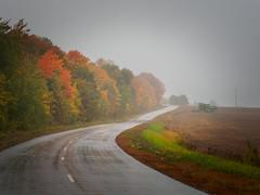 Autumn fog (banagher_links) Tags: olympus omd em10 mark iii mft micro 43 russia autumn fog country road rain