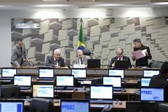 CAE - Comissão de Assuntos Econômicos (Senado Federal) Tags: cae ploa2019 projetodeleiorçamentáriaanual reuniãodeliberativa senadordaliriobeberpsdbsc senadorottoalencarpsdba senadortassojereissatipsdbce bandeiranacional brasília df brasil bra