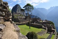Machu Picchu (Ryan Hadley) Tags: trees machupicchu waynapicchu huaynapicchu inca ruins architecture terraces landscape peru andesmountains andes mountains southamerica mountainlodgesofperu worldheritagesite