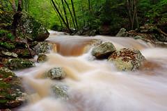 Little Stony Creek: Rocks (Shahid Durrani) Tags: little stony creek cascades pembroke virginia hurricane michael