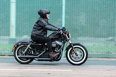 Brightona 2018-Harley Forty Eight (Caught On Digital) Tags: brighton brightona chopper custom harleydavidson motorbikes motorcycles sussex