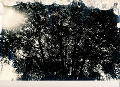 00000000_IMG_0001 (NAMARA EXPRESS) Tags: exhibition photostreet photoexhibition photograph print paper memorial old typhoons storm surge monochrome blackandwhite japan film trix plusx canon canoscan 9000f scanner scan namaraexp