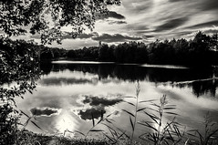 "from my series ""the lake"" (ro_ha_becker) Tags: landschaft landscape lake see himmel sky reflection spiegelung wolken clouds monochrome zwartwit schwarzweiss biancoenero blancetnoir blackandwhite blancoynegro"