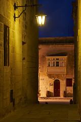 Oct 21, 2018 (pavelkhurlapov) Tags: tones colors mdina building lamp light balcony door window architecture passage cityscape night bluehour cat longexposure