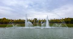 Versailles / Версаль (dmilokt) Tags: природа nature пейзаж landscape дворец palace dmilokt фонтан fountain nikon d750 versailles версаль