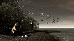 Never Alone (Neaira Aszkenaze) Tags: genus maitreya fall autumn nevariver neva river leaves wind sky horizon water ocean stram lake bushes trees foliage nature forest riverbank boat nutmeg pixicat ison doux dustbunny dust bunny fallen fallenleaves redhead