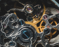 Gears of Time (zachary.locks) Tags: 52frames mechanical automatic circles closeup complicated details fossil frozen gears inside intricate macro movement moving precise small telling time tiny watch zlocks