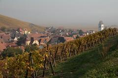 Katzenthal dans la brume. (Gisou68Fr) Tags: katzenthal vignoble vineyard vines village alsace hautrhin 68 automne autumn fall