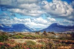 Connemara Spring (podolux) Tags: connemara countygalway galway mountains dx nikon nikond40 2007 blancoynegro blackandwhite monochrome postprocessing