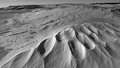 Wind Swept (quetzlegrys) Tags: assateague island beach dune snow ice forms lines landscape bw mono