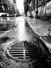 Rainy street Griffintown (MassiveKontent) Tags: streetphotography montreal bw contrast city monochrome urban blackandwhite streetphoto metropolis montréal quebec photography bwphotography streetshot architecture asphalt concrete shadows noiretblanc blancoynegro griffintown rain manhole drain water
