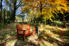 A place to sit and reflect (spennells pensioner) Tags: stmichaels stourport worcestershire graveyard seat light autumn kidderminster canon 700d