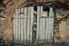 Anatole (Isa-belle33) Tags: porte door garage architecture fujifilm old ancien pareidolie visage face