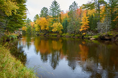 Reflections on the Kettle River (Rivers, Lakes & Nature) Tags: autumn fall kettleriver reflection water river pine red green gold nikon minnesota sandstone banningstatepark peace nature nikkor onlyinmn color seasons