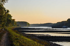 20181015-K32E7616 (AldAsAck1957) Tags: rhine karlsruhe germany low water sunset fall colour