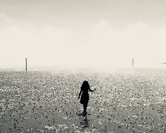 Beach silhouette