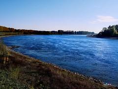 Schöne Aussicht Benrath (QuidoX) Tags: rhein fluss düsseldorf nrw river rhine blue water strom herbst autuum green nature